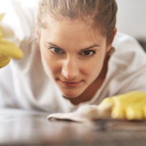 cleaner housekeeper